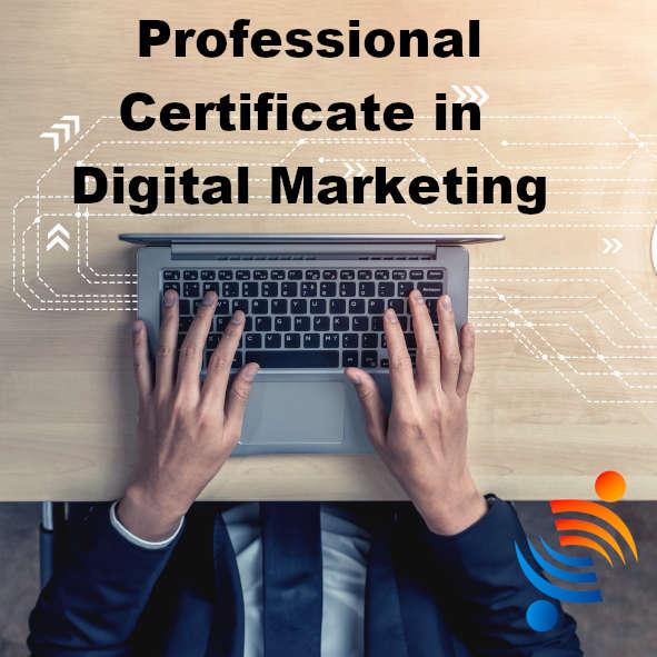 professional-certificate-in-digital-marketing